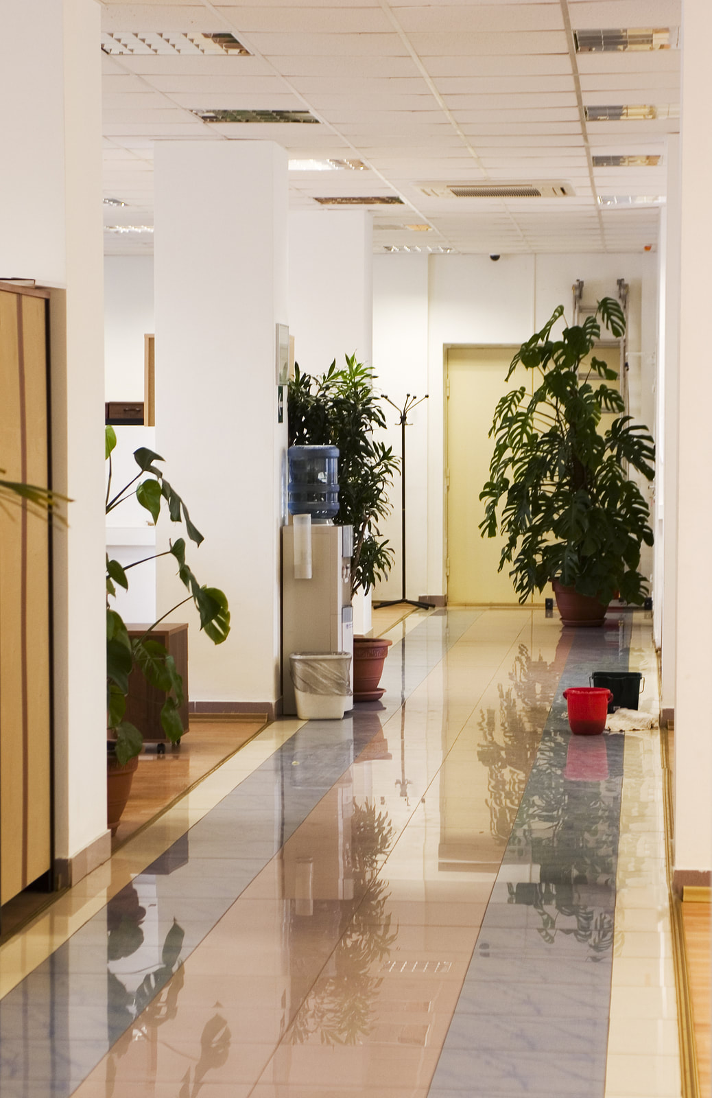 Commercial property shining after a deep janitorial clean